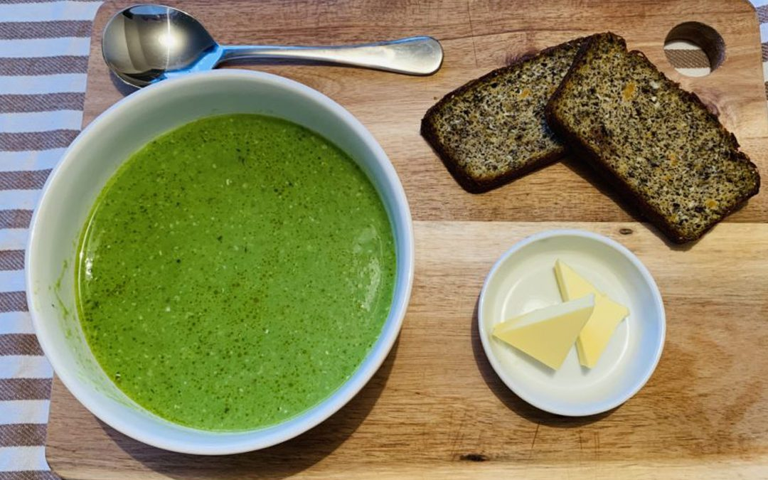 Hack Your Health With Hemp Soup